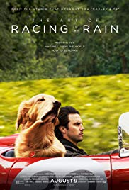 Watch Movie the-art-of-racing-in-the-rain