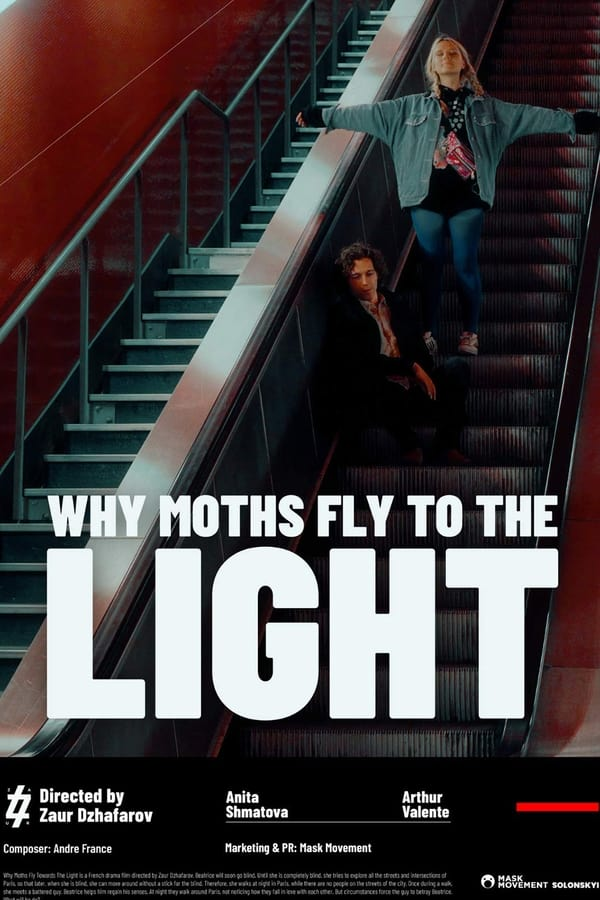 Watch Movie why-moths-fly-to-the-light